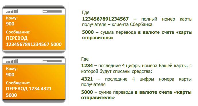 Нужна ли зеленая карта в белоруссии