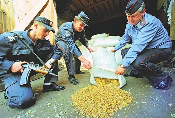 Изображение - Как стать старателем в россии получаем лицензию на добычу золота 4-TASS_227572